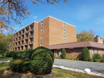 255 S West Avenue UNIT 303, Elmhurst, IL 60126 - #: 10111096