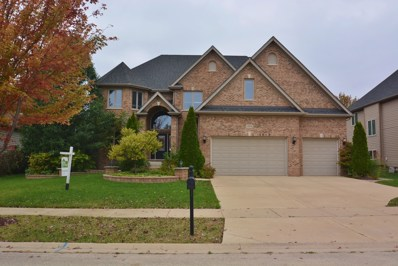 11674 Liberty Lane, Plainfield, IL 60585 - #: 10111264