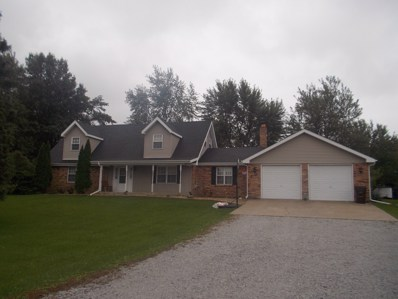 249 W Church Road, Beecher, IL 60401 - #: 10111739
