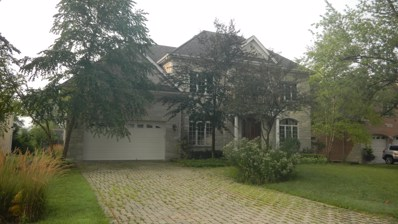 522 W 58th Place, Hinsdale, IL 60521 - #: 10112584