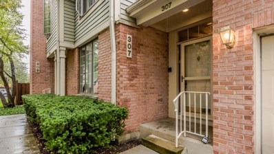 307 E Evergreen Avenue UNIT A, Mount Prospect, IL 60056 - MLS#: 10113276