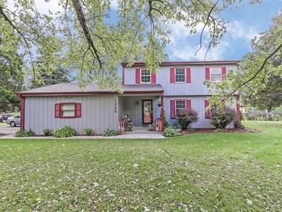 1225 Pleasant Drive, Elgin, IL 60123 - MLS#: 10113280
