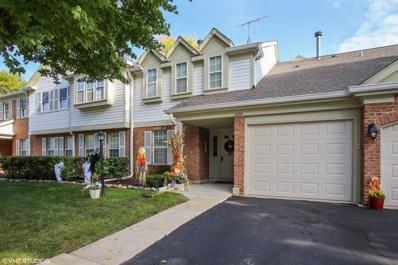 1258 Rosewood Court UNIT C1, Schaumburg, IL 60193 - MLS#: 10113297