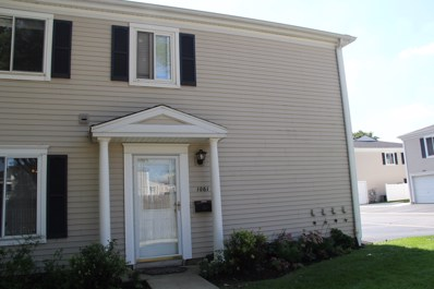 1061 Cove Drive UNIT 140D, Prospect Heights, IL 60070 - #: 10113408