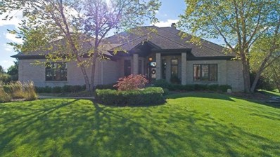 6203 Brighton Lane, Lakewood, IL 60014 - #: 10113534