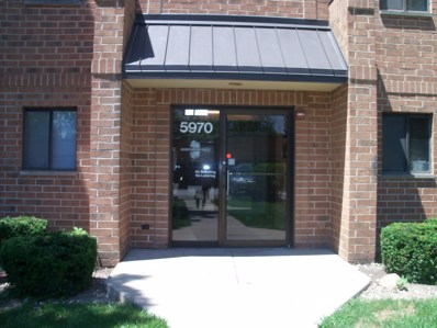 5970 Lake Bluff Drive UNIT 702, Tinley Park, IL 60477 - MLS#: 10113872