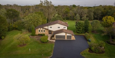14411 S Twin Creek Lane, Homer Glen, IL 60491 - MLS#: 10113895