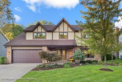 2320 Oak Hill Drive, Lisle, IL 60532 - #: 10114921