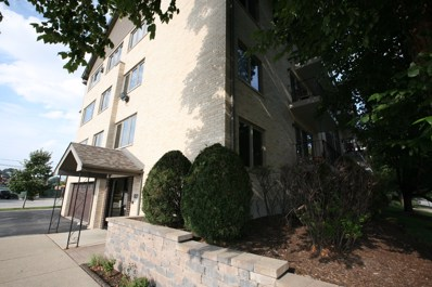 4560 W 93rd Street UNIT 2A, Oak Lawn, IL 60453 - MLS#: 10114980