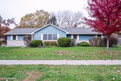 13214 Hickory Lane, Woodstock, IL 60098 - #: 10115035