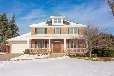 529 W 56th Street, Hinsdale, IL 60521 - #: 10115249