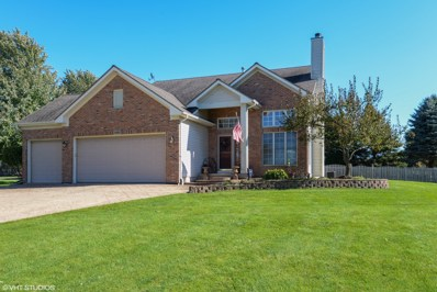 18009 Springbrook Circle, Union, IL 60180 - #: 10115289