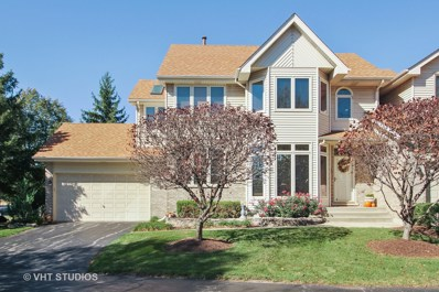 7022 Plymouth Court, Tinley Park, IL 60477 - #: 10116158