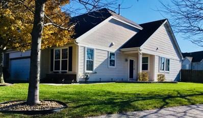 8230 Tremont Lane, Joliet, IL 60431 - #: 10116160