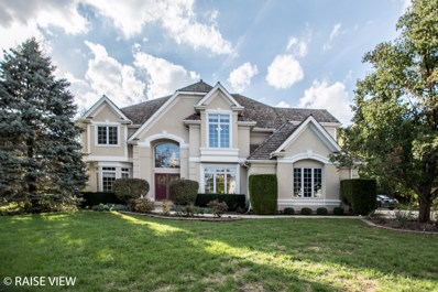 3111 Treesdale Court, Naperville, IL 60564 - #: 10116171