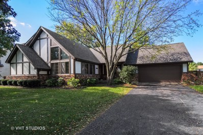 10S556  Book Road, Naperville, IL 60564 - #: 10116282