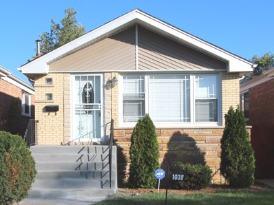 1038 W 108th Place, Chicago, IL 60643 - MLS#: 10116696