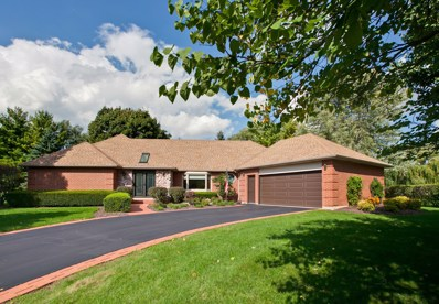 25942 N Tahoe Court, Long Grove, IL 60060 - #: 10116727