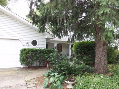 542 W 56th Street, Hinsdale, IL 60521 - #: 10117101