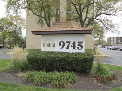 9745 S Karlov Avenue UNIT 408, Oak Lawn, IL 60453 - MLS#: 10117244