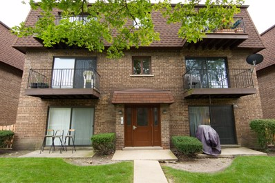 9813 Bianco Terrace UNIT D, Des Plaines, IL 60016 - MLS#: 10117427