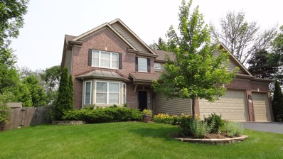 113 S Clyde Avenue, Palatine, IL 60067 - #: 10117891
