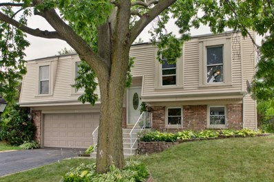 455 Norman Lane, Roselle, IL 60172 - #: 10118161
