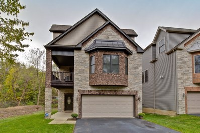 21259 W Shady Lane, Lake Zurich, IL 60047 - MLS#: 10118505