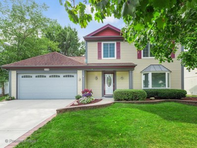 1110 Scarlet Oak Circle, Aurora, IL 60506 - MLS#: 10118590