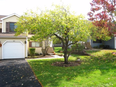 987 Westchester Circle, Schaumburg, IL 60193 - #: 10118903