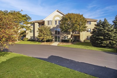 6820 Ridge Point Drive UNIT 3B, Oak Forest, IL 60452 - #: 10118934