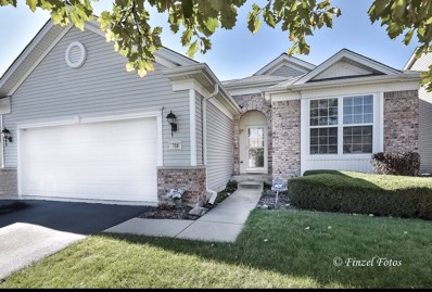 708 Tahoe Trail, Elgin, IL 60124 - #: 10119385