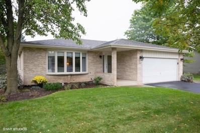16417 Winding Creek Road, Plainfield, IL 60586 - #: 10119559