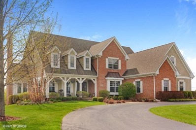 104 Governors Way, Hawthorn Woods, IL 60047 - #: 10119690