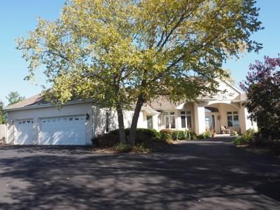 15306 W Pantigo Lane, Homer Glen, IL 60491 - #: 10119926