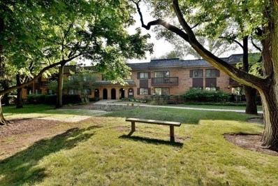 8020 Woodglen Lane UNIT 202, Downers Grove, IL 60516 - MLS#: 10120089