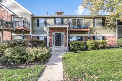 1300 Mc Dowell Road UNIT 202, Naperville, IL 60563 - #: 10120166