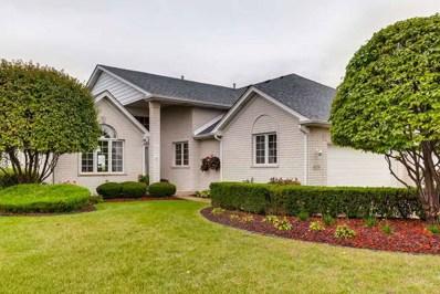 16236 Hummingbird Hill Drive, Orland Park, IL 60467 - #: 10120187