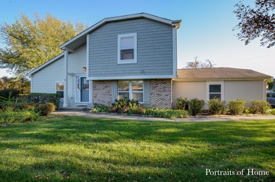 0N721  Concord Lane UNIT NA, Winfield, IL 60190 - #: 10120262
