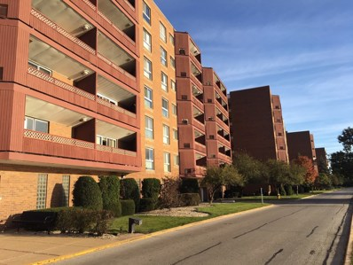100 Park Avenue UNIT 204, Calumet City, IL 60409 - #: 10121066