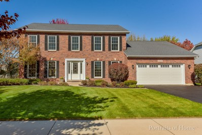 2339 Indian Grass Road, Naperville, IL 60564 - #: 10121255