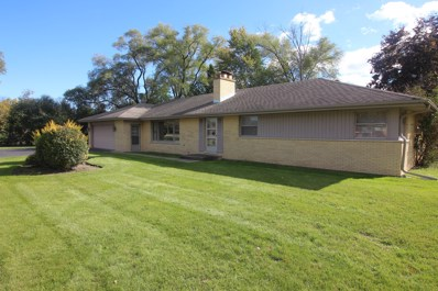 3 Glenbrook Drive, Prospect Heights, IL 60070 - #: 10121430