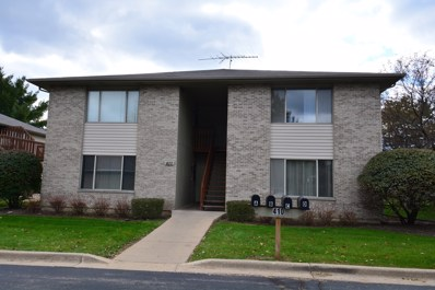 410 Westwood Court UNIT D, Crystal Lake, IL 60014 - #: 10121444
