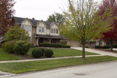 24 Stirrup Cup Court, St. Charles, IL 60174 - #: 10122106