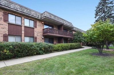 8000 Woodglen Lane UNIT 205, Downers Grove, IL 60516 - MLS#: 10122246