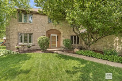 3507 Othello Drive, Naperville, IL 60564 - #: 10122270