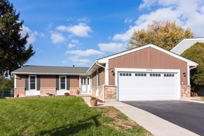 1340 Waterbury Lane, Roselle, IL 60172 - #: 10122978