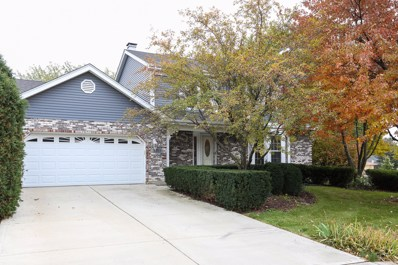 6719 Meade Place, Downers Grove, IL 60516 - MLS#: 10123303