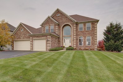 26824 Ashgate Crossing, Plainfield, IL 60585 - #: 10123620
