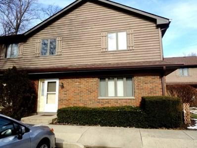 322 N Airlite Street, Elgin, IL 60123 - MLS#: 10123757